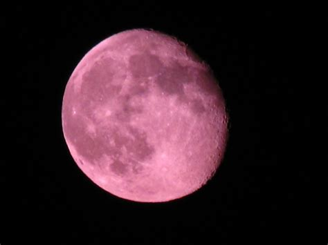 Moon Pink a pink moon by prettypunkae on deviantart