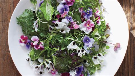 1000 images about edible flowers recipe ideas on green salad with edible flowers recipe martha stewart