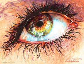 color pencil drawings 25 hyper realistic color pencil drawings by