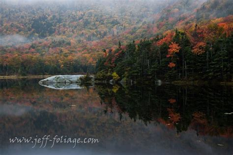 new england s spectacular fall foliage summer 2017 fall foliage forecast for august 2017 new england fall