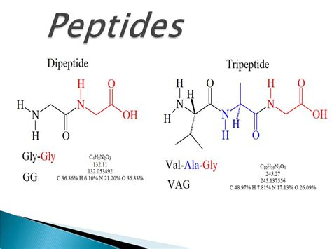 peptide types and functions