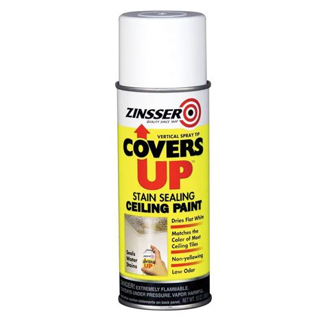 Zinsser Ceiling Paint Review by Zinsser 13 Oz Covers Up Paint And Primer In One Spray For