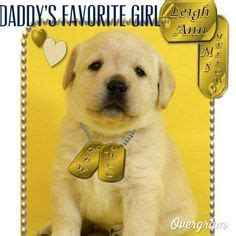 theme names for a litter of puppies 1000 images about honor litter and olive on pinterest