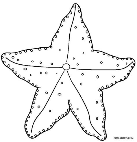starfish colors starfish pictures to color