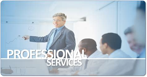 professional service professional services