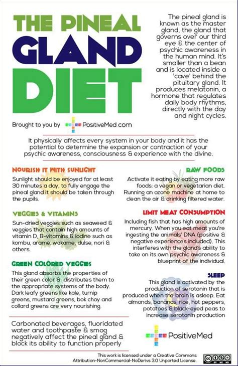 Pineal Gland Detox Side Effects by Best 25 Pineal Gland Facts Ideas On Decalcify