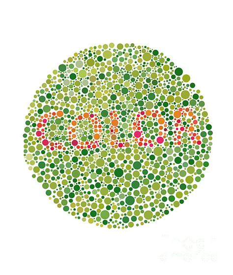 Color Blind America color blindness test by spencer sutton