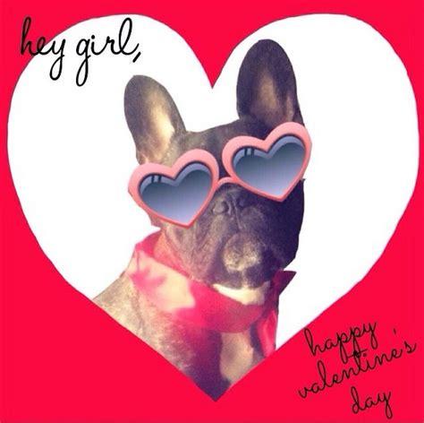 valentines day bulldog happy valentines day bulldog
