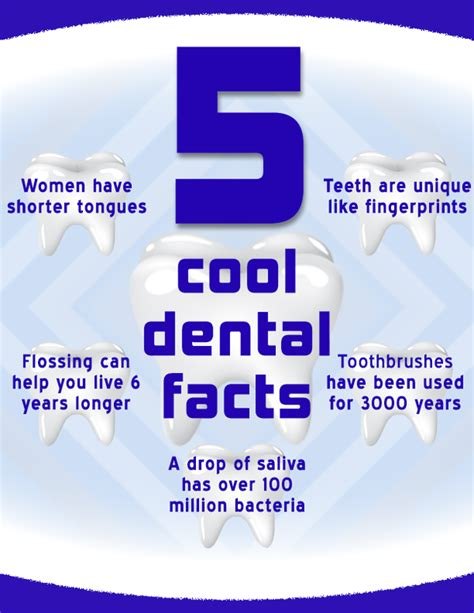 some cool dental facts health dental facts and dental