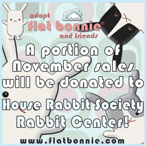 buy a house rabbit buy a flat bonnie benefit house rabbit society house rabbit society