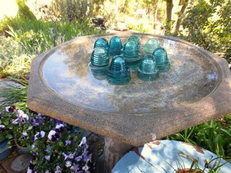 easy steps to a clean birdbath sierra foothill garden