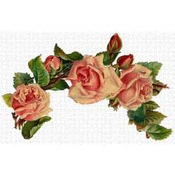 Decorative Paper Clips Victorian Pink Roses And Victorian Flowers On Pinterest