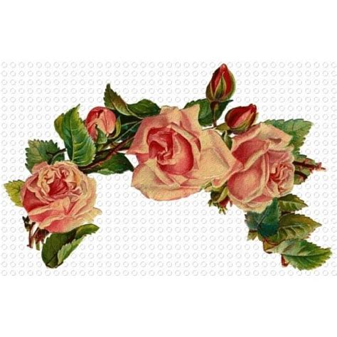 printable victorian flowers 55 best images about antique roses on pinterest clip art