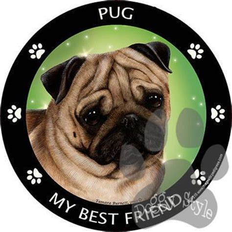 best pug wipes pug fawn my best friend breed magnet cars freedom and trucks