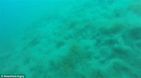 earthquake underwater video shows divers caught in a 5 7 magnitude earthquake