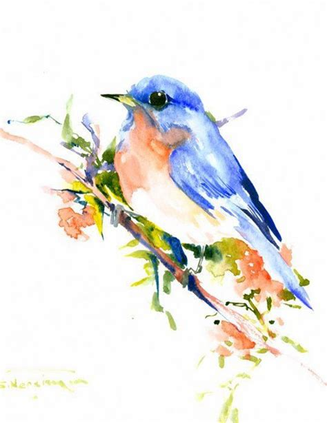一組很好看的畫鳥的水彩畫插畫欣賞 gigcasa 激趣網