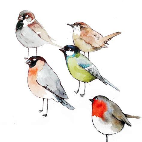 Birds Illustration bird illustration black bird illustration royalty free