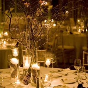 Winter Wedding Ideas On A Budget Weddings By Lilly Wedding Centerpiece Ideas On A Budget