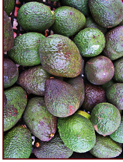 healthy fats poliquin why is great for you seven tips for so you