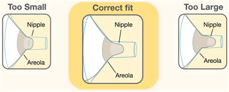 what size breast shield comes with medela swing new breastshield sizing tool aids clinicians medela