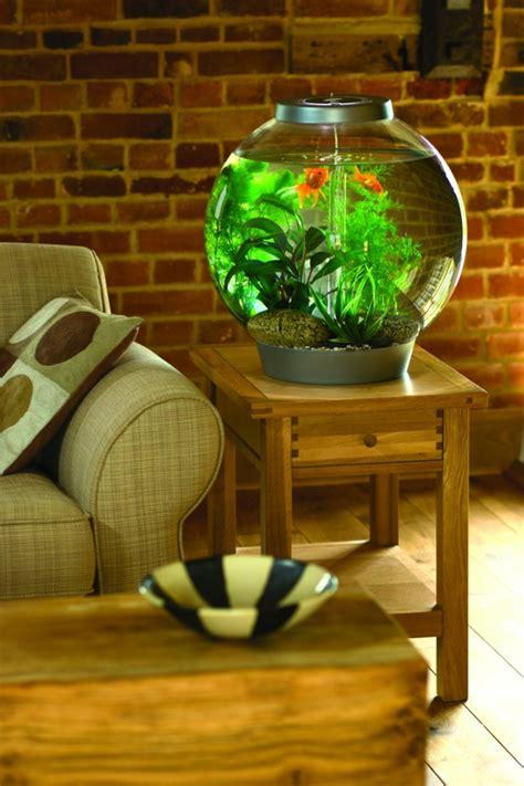kleines aquarium als beruhigendes element  die wohnung