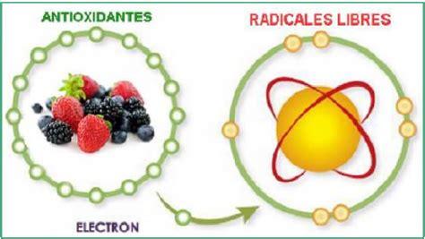 imagenes de radicales libres y antioxidantes antioxidantes la tendencia en el consumo de alimentos