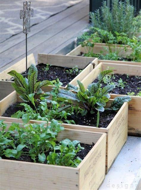 Simple Vegetable Garden Ideas Get Started Growing 5 Easy Small Vegetable Garden Ideas To Try