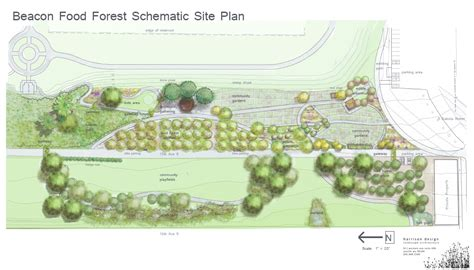 layout of forest nursery into the woods seattle plants a public food forest grist