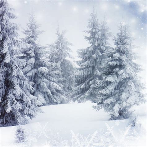 winter woods watercolor clip pine trees snow log cabin watercolor background gray winter photography backdrops snow world pine tree white snowy floor background