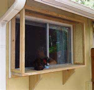 make my house 25 best ideas about cat window on pinterest cat door for window cat hammock and cat room