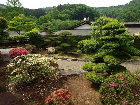 piante per giardino zen le piante da giardino giardinaggio piante per giardino