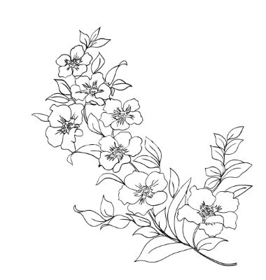 https cdn vectorstock com i composite 37 18 twig cherry