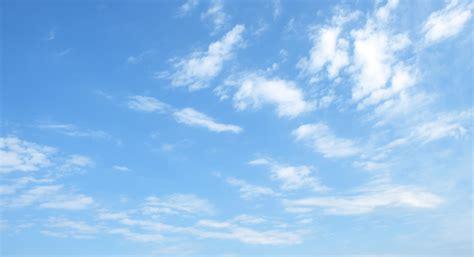 mouches volantes behandlung homöopathie h 228 ufige fragen fliegende m 252 cken