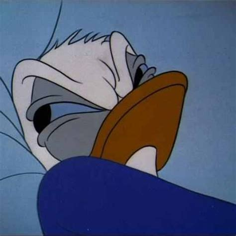 donald duck bed rage meme generator