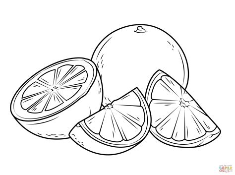 piece of fruit orange coloring page sketch coloring page