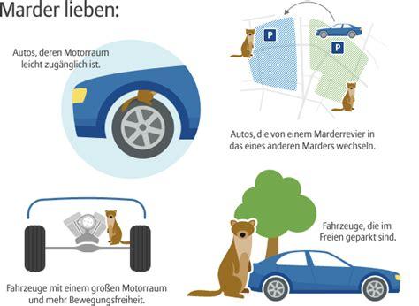 Marder Auto Versicherung by Marderbiss Mardersch 228 Den Vorbeugen Allianz