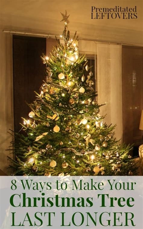 how long do real christmas trees last 8 ways to make your tree last longer