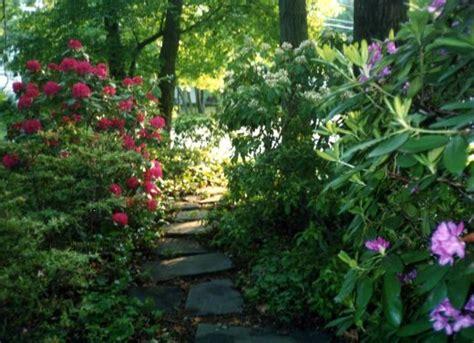 planning your shady garden woodland garden shrub and gardens