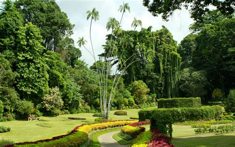 Botanical Garden Kandy Most Beautiful Botanical Gardens Around The World Travel Leisure