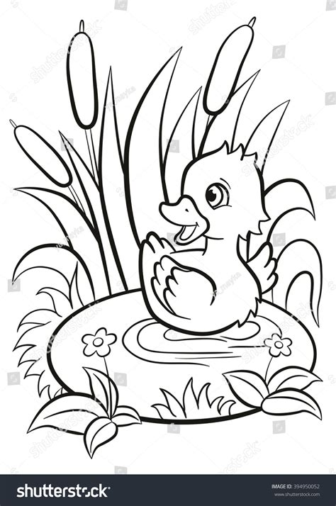 coloring pages little cute duckling swims stock vector