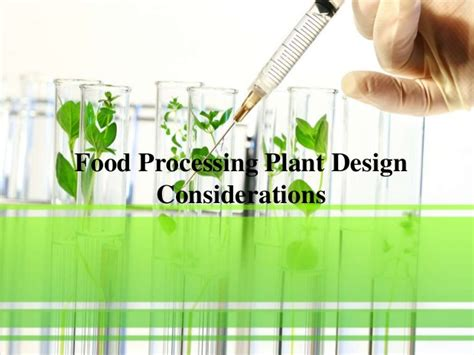 plant layout design considerations food processing plant design considerations