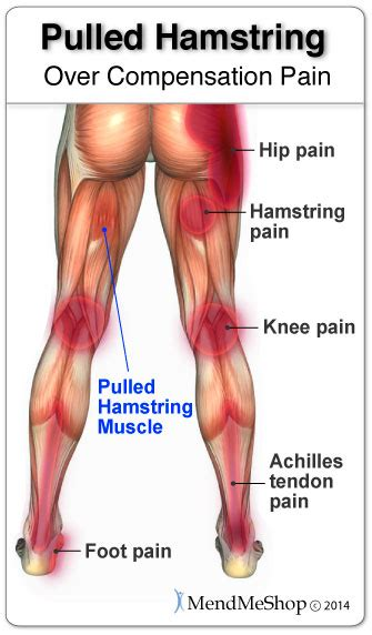 how long does it take for your leg hairs to grow back sports and fitness injury pulled hamstring health life
