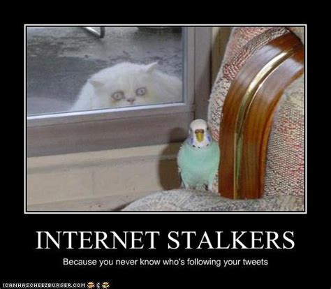Stalkers On The by Expats Where S That Stalking Thread To