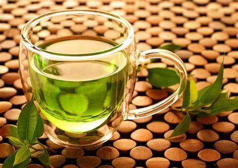 Dan Khasiat Teh Hijau khasiat dan manfaat teh hijau bagi kesehatan tubuh