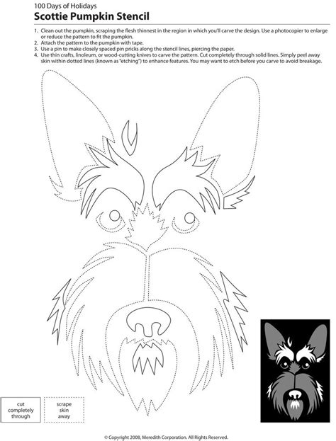 yorkie pumpkin stencil downloadable breed pumpkin stencils popsugar pets