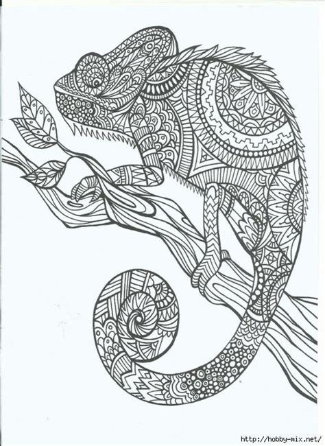 zentangle doodling krugovorot uzorov  prirode