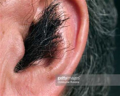 hair ears cut hair ear hair removal trimmer cream wax laser singeing