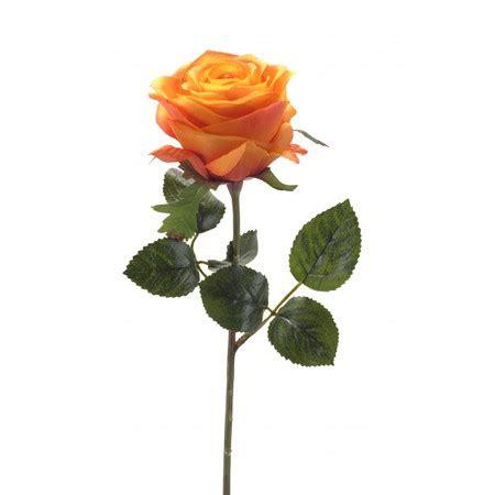 fiori d arancio reggio emilia rosa singola arancione fiori a reggio emilia consegna a