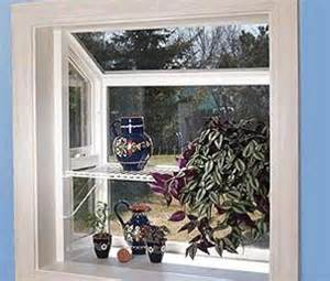 Window Plants Plant Windows Get Domain Pictures Getdomainvids