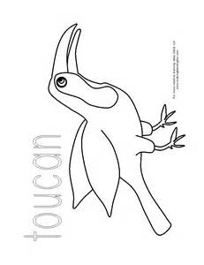 toucan coloring page rainforest toucan free colouring pages